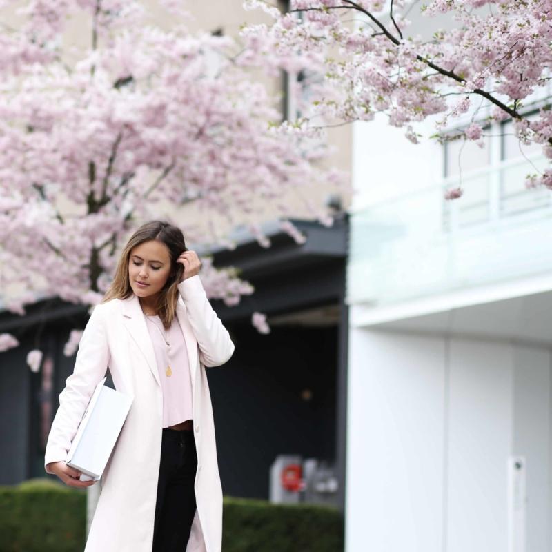 rosa blüten frühling
