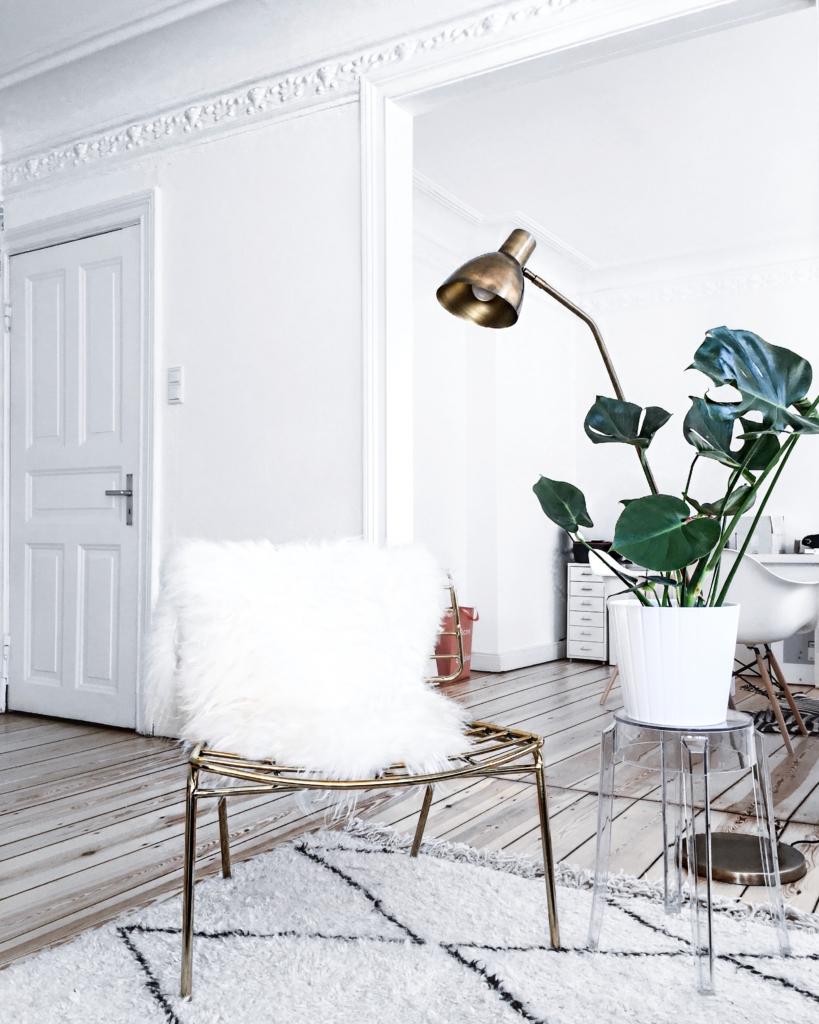 Dekoration - goldener Stuhl, Pflanze, Lampe, Fell