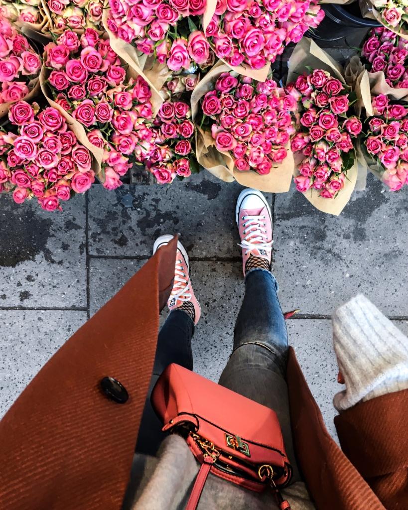 Rosen, Tasche, Converse, Netzstrumpfhose