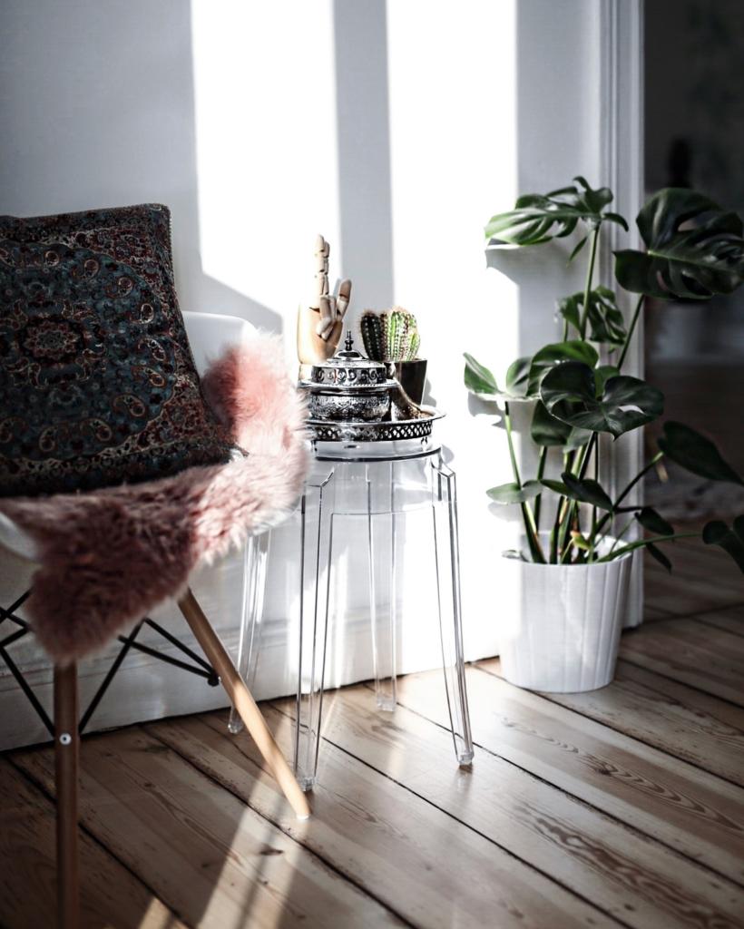 Dekoration - Stuhl, Kissen, Fell, Beistelltisch, Kaktuss, Pflanze