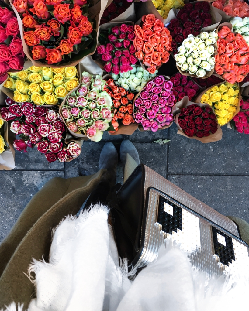 Blumen, Rosen, Tasche, Mantel, Stiefel